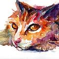 Watercolor Orange Tubby Cat by Svetlana Novikova