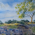 Watercolor - Tree And Meadow by Cascade Colors