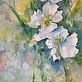 Watercolor Wild Flowers by Robin Miller-Bookhout