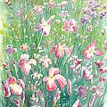Watercolour Of Pink Iris's In A Green Field by Gill Bustamante