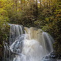 Waterfall After The Rain by Debra and Dave Vanderlaan