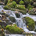 Waterfall by Ayhan Altun