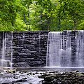 Waterfall by Bill Cannon