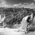 Waterfall Black And White by Tim Hester