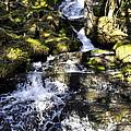 Waterfall by Cathy Mahnke