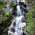 Waterfall - Conkle Lake by Guy Hoffman