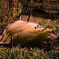 Waterfall by Dawn OConnor