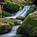 Waterfall Great Smoky Mountains  by Rich Franco