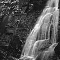 Waterfall by Harold Rau