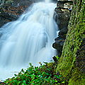 Waterfall - High Water On Falls Brook by JG Coleman