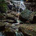 Waterfall In A Forest, Arethusa Falls by Panoramic Images