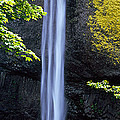 Waterfall In A Forest, Latourell Falls by Panoramic Images