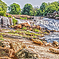 Waterfall In Contrast by Elvis Vaughn