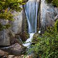 Waterfall In Japanese Garden by Elena Elisseeva