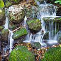 Waterfall In Marlay Park by Semmick Photo