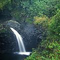 Waterfall In Rainforest Hana Highway Maui Hawaii by John Burk