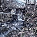 Waterfall In The Fall by Frank Piercy