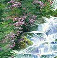 Waterfall by Ken Meyer
