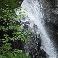 Waterfall Mine Kill State Park New York by Lizi Beard-Ward