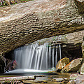 Waterfall Under Fallen Log by Jonah  Anderson