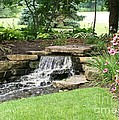 Waterfall With Coneflowers by Laurie Eve Loftin