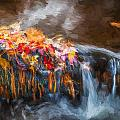 Waterfalls Childs National Park Painted  by Rich Franco
