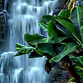 Waterfalls by Toby Horton
