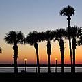 Waterfront After Dark by Debra and Dave Vanderlaan