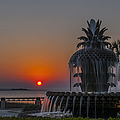 Waterfront Park Sunrise by Dale Powell