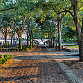 Waterfront Park by Walt  Baker