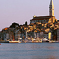 Waterfront, Rovinj, Croatia by Panoramic Images