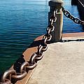 Waterfront Trail by Pennie  McCracken