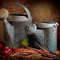 Watering Cans by David and Carol Kelly