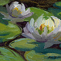 Waterlilies At Martha Lake 1 by Diane McClary