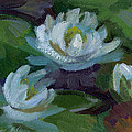 Waterlilies At Martha Lake 2 by Diane McClary