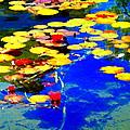 Waterlilies Pond Beautiful Nympheas Hommage De Monet Jardin A Giverny Water Scapes Carole Spandau by Carole Spandau