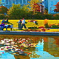 Waterlily Gardens At The Old Port Vieux Montreal Quebec Summer Scenes Carole Spandau by Carole Spandau