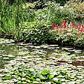 Waterlily Pond Giverney by Christiane Schulze Art And Photography