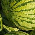 Watermelons by Stuart Litoff