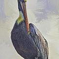 Waterway Pelican by Deborah Benoit