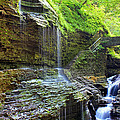 Watkins Glen Cascades by Mary and Curt Johnston