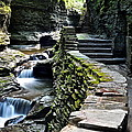 Watkins Glen Exiting The Trail by Frozen in Time Fine Art Photography