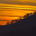 Watts Valley Sunset by Doug Holck