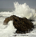 Wave At Shore Acres by Bob Christopher