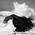 Wave At Shore Acres Bw by Bob Christopher