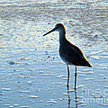 Wave Watching by Nancy L Marshall