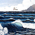 Waves And Tern by Barbara Griffin