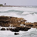 Waves Pounding Costa Maya, Mexico by Marcus Dagan