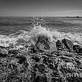 Waves Crashing Bw by Michael Ver Sprill