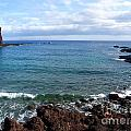 Waves Of Hawaii by Christie Greiner-shelton